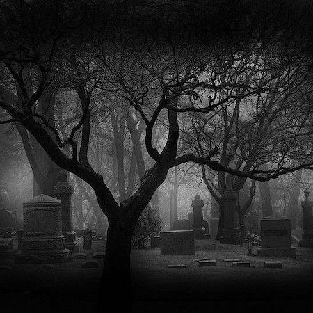 Fright Night Tour